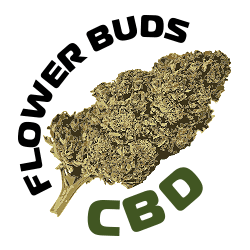 CBD Flower Buds