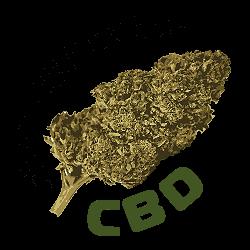 CBD Flower BUDs logo