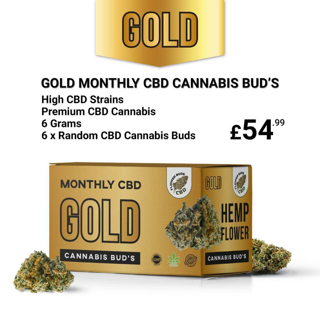 Gold Monthly CBD Cannabis Bud's