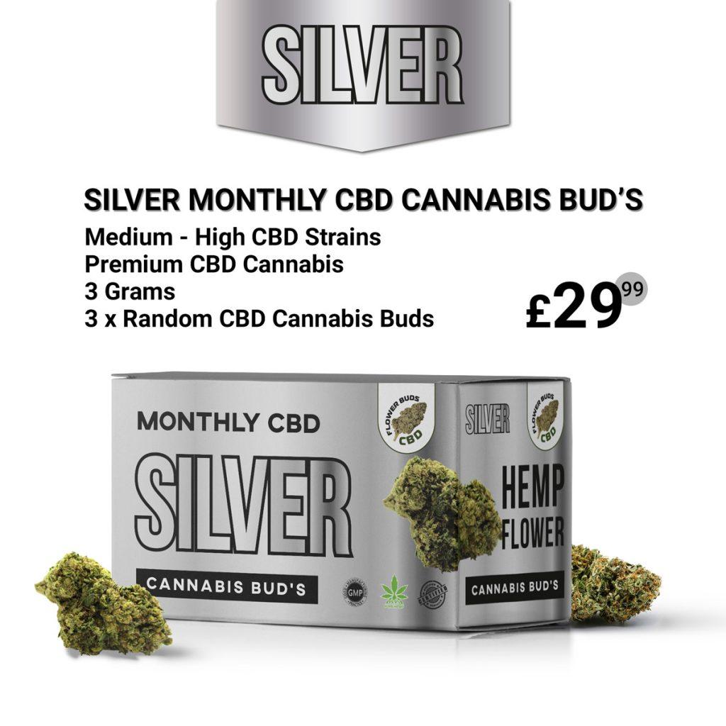Silver Monthly CBD Cannabis Bud's