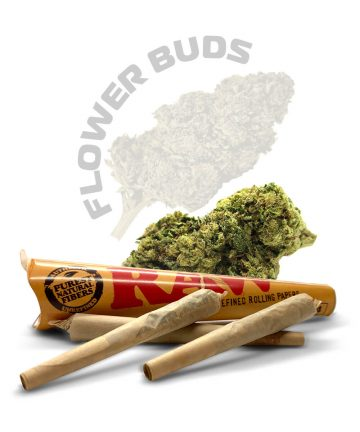 Royal Cheese Pre-Rolled CBD Joints & Spliffs image 1